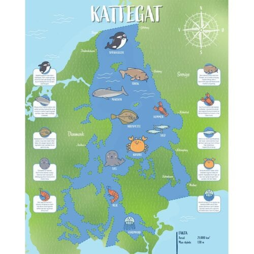 Egnstavle - Kattegat-0