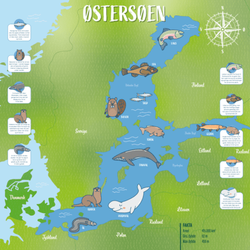 Egnstavle - Østersøen-0
