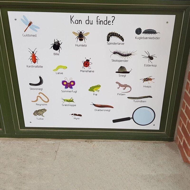 'Kan du finde' - Skilteplade, 100x100 cm - Læringstavle-22334
