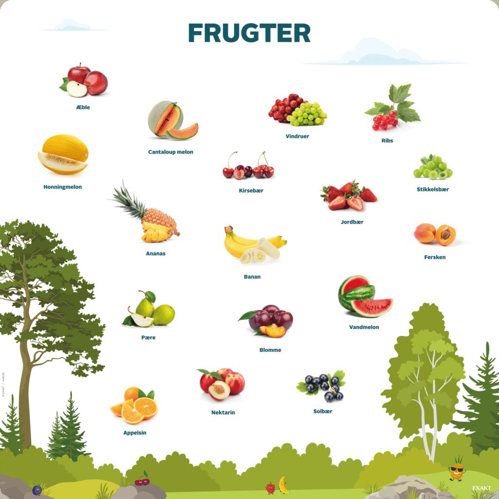 Læringstavle med oversigt over frugter. Gør børnene i daginstitutionen bekendte med de frugter de ser og spiser til hverdag.