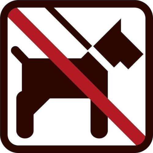 Hunde forbudt - Vinduesfolie, pakke med 5 stk.-0