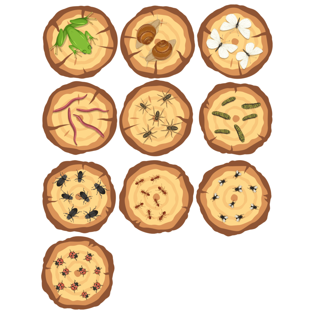 Gulvfolie til daginstitutionen med 10 træstammer, der viser henholdsvis 1-10 forskellige insekter og smådyr til optælling.