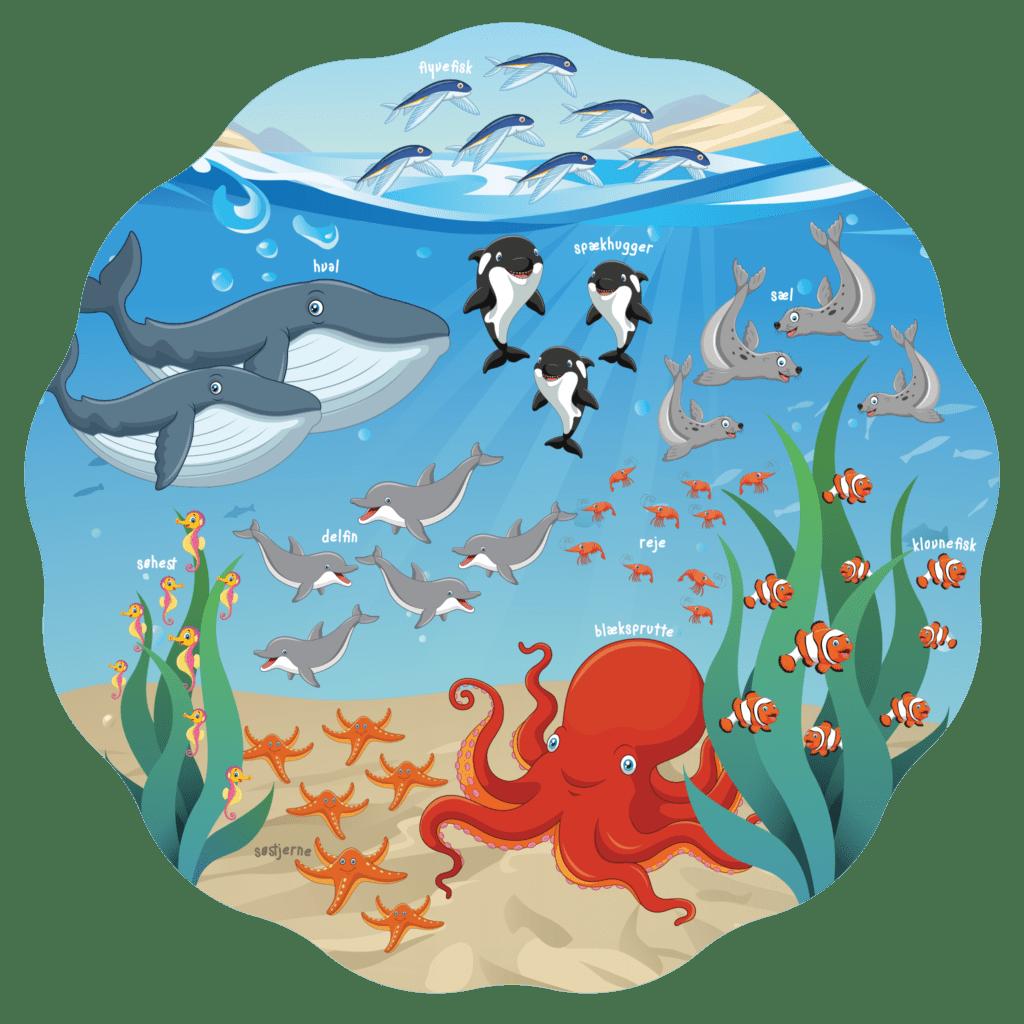 Gulvfolie med tællehav, der viser havets rige dyreliv. God som lærerig dekoration til tælleøvelser i daginstitutionen.