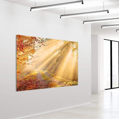 Akustikbillede Natur 120x180cm