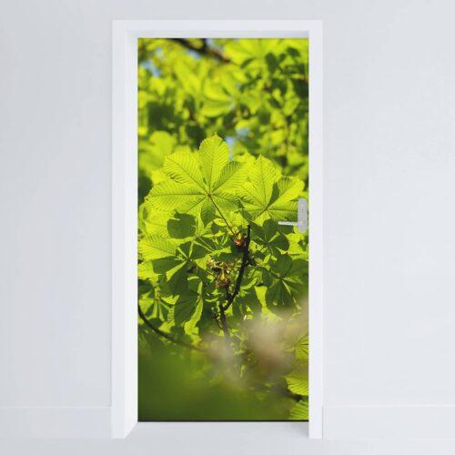 Doerfolie Blade02 215x100cm