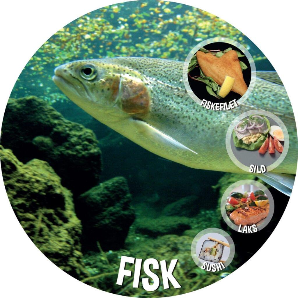 Mad Udskaering Fisk Oe800