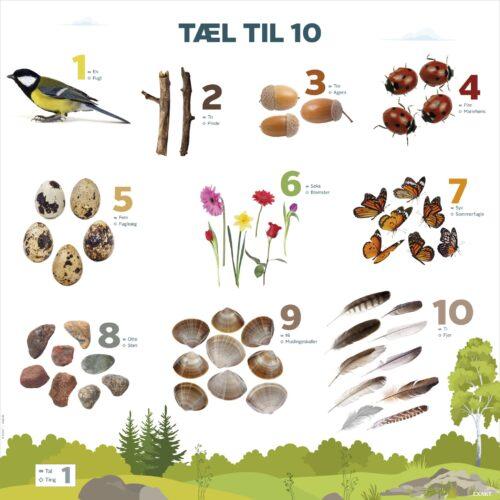 Læringstavle 'Tæl til 10' er en fantastisk måde at inddrage læring om både natur og matematik hos børnene i daginstitutionen.