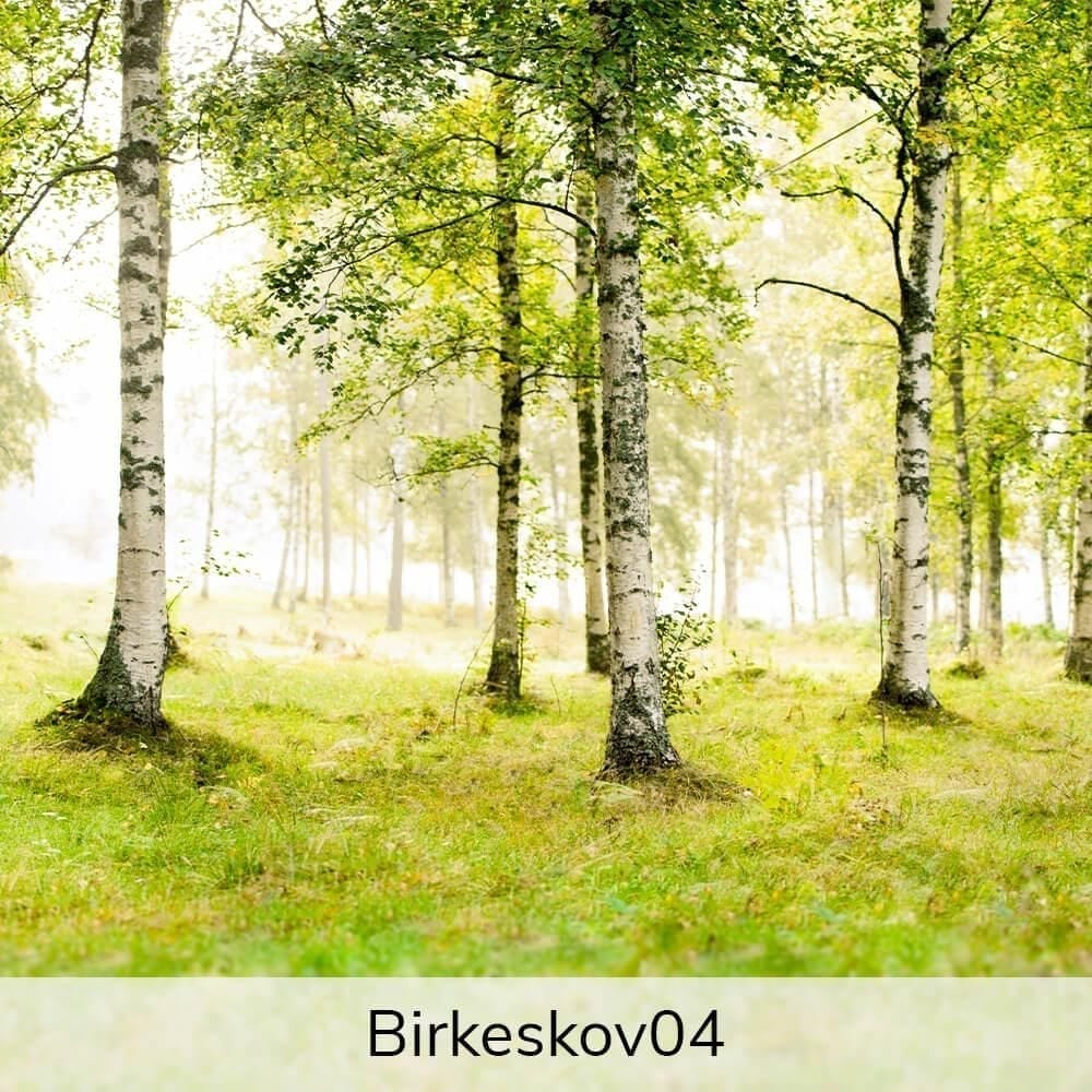 Vægramme - Birkekov-motiver-27378