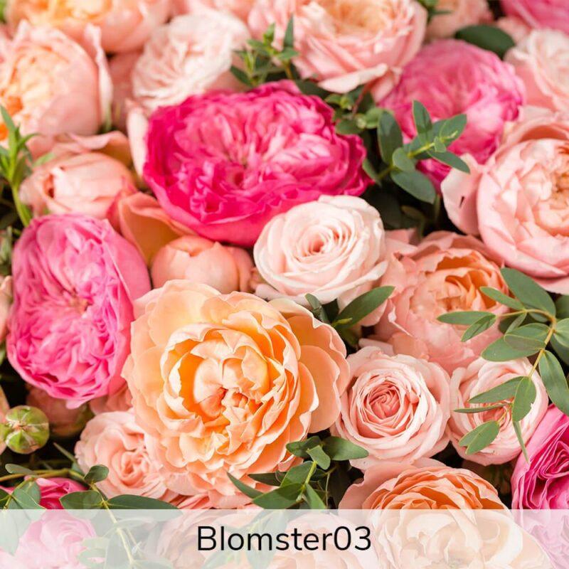 Vægramme - Blomster-motiver-27387