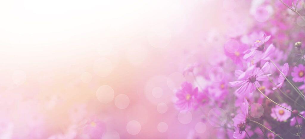 blomster13 m