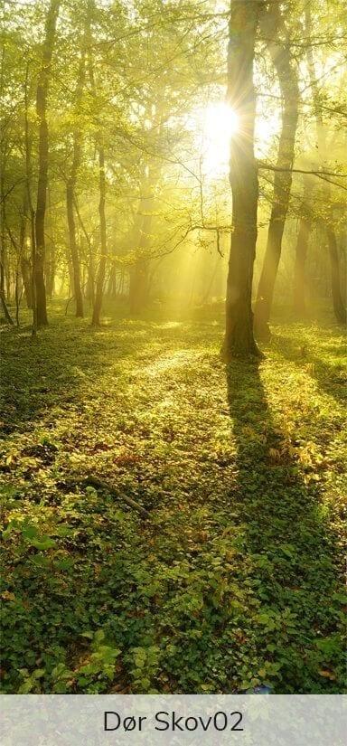 Dørfolie - Motiver fra skoven-27743