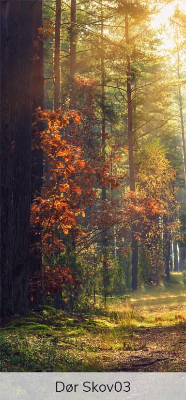 Dørfolie - Motiver fra skoven-27744
