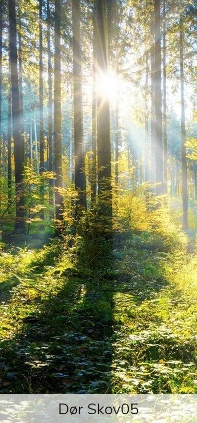 Dørfolie - Motiver fra skoven-27747