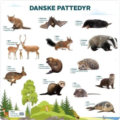 danske pattedyr 3
