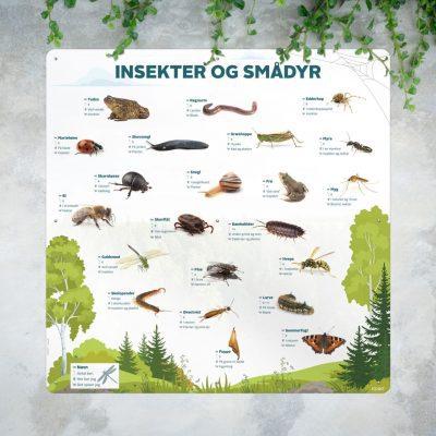 Insekter og smaadyr Mockup