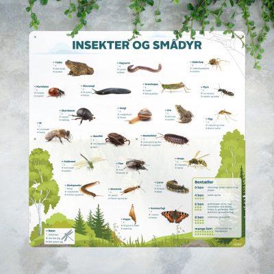 Insekter og smaadyr bentaeller mockup