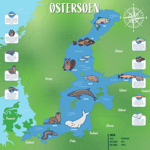 Østersøen_100x100