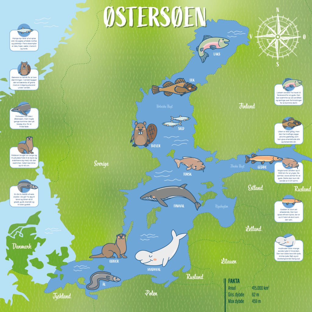 oestersoeen 100x100 g