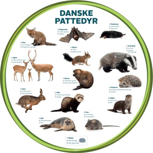 Danske Pattedyr, Ø100 cm - Læringstavle-0