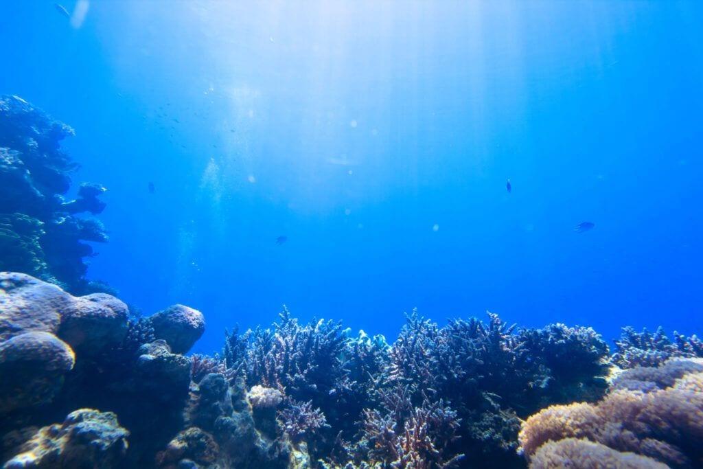 undervandet05 m